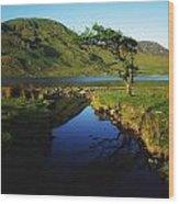Co Galway, Kylemore Lough, Benbaun Wood Print