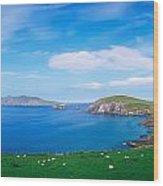 Co Kerry, Dingle Peninsula, Slea Head & Wood Print