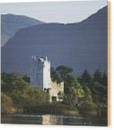 Co Kerry, Killarney, Ross Castle Wood Print