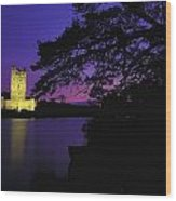 Co Kerry, Ross Castle, Killarney Wood Print
