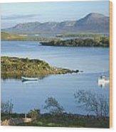 Co Mayo, Ireland Evening View Across Wood Print