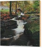 Co Wicklow, Ireland Waterfalll Near Wood Print