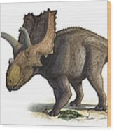 Coahuilaceratops Magnacuerna Wood Print