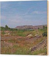 Coal Region Wood Print