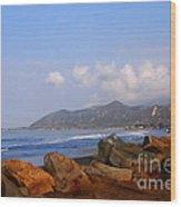 Coast Line California Wood Print by Susanne Van Hulst