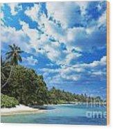Coast Of Indian Ocean Wood Print
