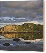 Coastal Cliffs In Evening Light Wood Print
