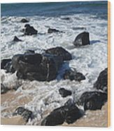 Coastal Rock Garden 2 Wood Print