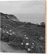 Coastal View Mist - Black And White Wood Print
