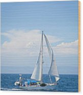 Coastline Sailing Wood Print