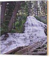 Coat Hanger Falls  Wood Print