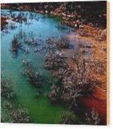 Gobbler Creek Wood Print
