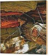 Cobwebs Wood Print by Tina Slee