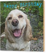 Cocker Spaniel Birthday Wood Print