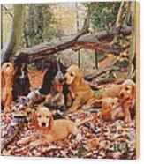 Cocker Spaniel Wood Print