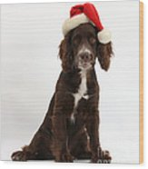 Cocker Spaniel With Santa Hat Wood Print
