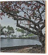 Coconut Island In Hilo Bay Hawaii Wood Print