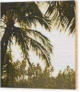 Coconut Palm Trees On The Coast Wood Print
