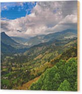 Cocora Valley Wood Print