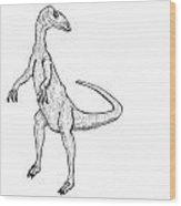 Coelophysis - Dinosaur Wood Print