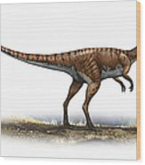 Coelophysis Bauri, A Prehistoric Era Wood Print