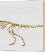 Coelophysis Dinosaur Skeleton, Art Wood Print