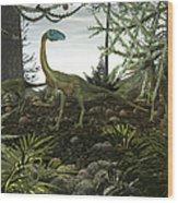 Coelophysis Dinosaurs Walk Amongst Wood Print