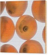 Coho Salmon Oncorhynchus Kisutch Eggs Wood Print