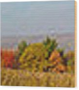 Cohocton Panorama Wood Print