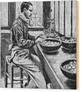 Coin Production, 19th Century Wood Print