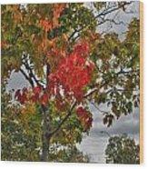 Cold Autumn Breeze  Wood Print