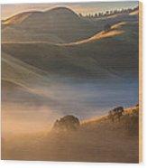 Cold Fog At Sunrise Wood Print
