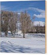 Cold Park Wood Print
