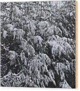 Cold Winter Snow Wood Print