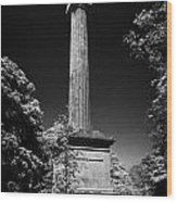 Cole Memorial Monument Enniskillen Wood Print