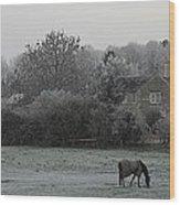 Coleshill Wood Print