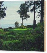 Colette's Garden Wood Print by Ric Soulen