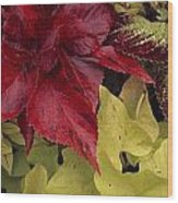 Coleus And Other Plants In A Window Box Wood Print