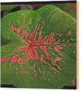 Colius Leaf Wood Print