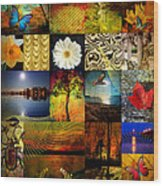 Collage Of Colors Wood Print