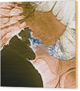 Colon Cancer, X-ray Wood Print by Du Cane Medical Imaging Ltd