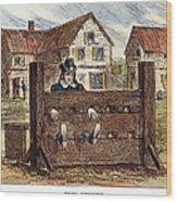 Colonial Stocks Wood Print
