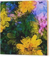 Color 108 Wood Print