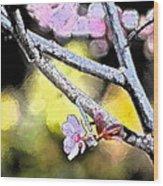 Color 62 Wood Print