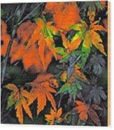 Color 92 Wood Print
