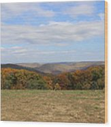 Color Beyond The Field Wood Print