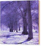 Color Infrared Winter Landscape Wood Print
