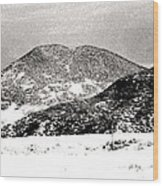 Colorado 2 In Black And White Wood Print