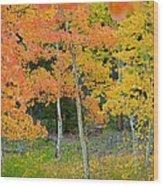 Colorado Aspens Bejeweled Wood Print