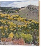 Colorado Autumn Aspens Colors Wood Print